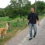 Kutyasétáltatás közben